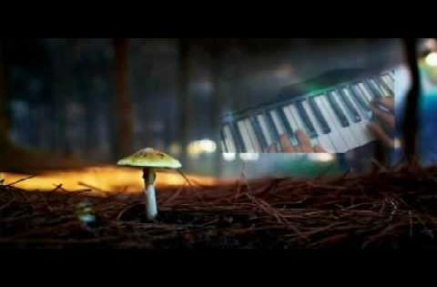 Chiuey - Mystical Journey (Original Composition)